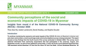Thumbnail Image of Cover Page of IFPRI Brief: Community Perceptions of the Social and Economics Impacts of COVID-19 in Myanmar