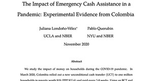 Thumbnail Image of Title Page of Working Paper: The Impact of Emergency Cash Assistance in a Pandemic: Experimental Evidence from Colombia